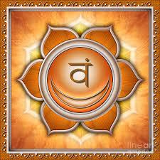 svadhisthana și erecție