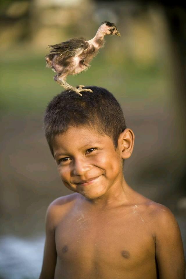 Imunitatea este fericirea….